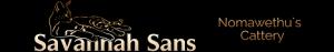 Savannah-Katzen-Zucht